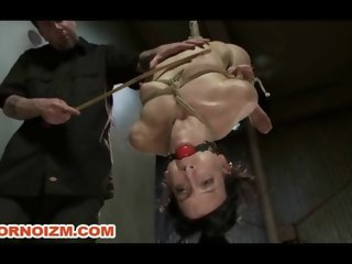 Slave Bondage Elise in Ropes with Box